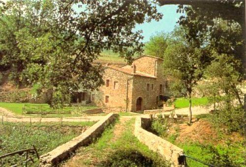 Villa Arrighi - Image 1 - Castelnuovo dell'Abate - rentals