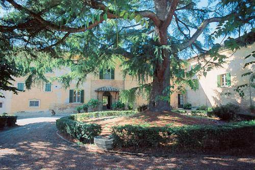 Villa Cedro - Image 1 - Buonconvento - rentals
