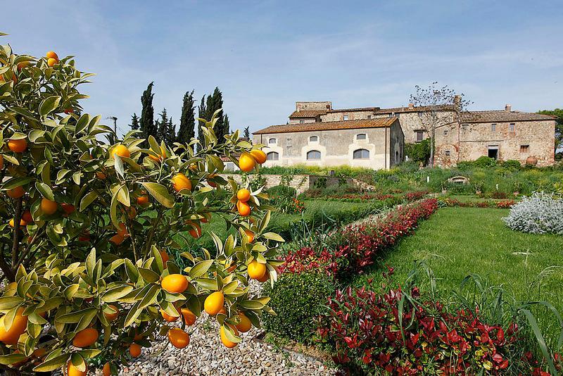 Casa Gina - Image 1 - San Casciano in Val di Pesa - rentals