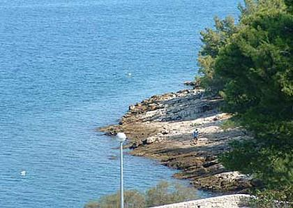 sea view (house and surroundings) - 01801POST A1(2) - Postira - Postira - rentals