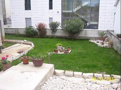 garden (house and surroundings) - 5342 A1(6) - Zadar - Zadar - rentals