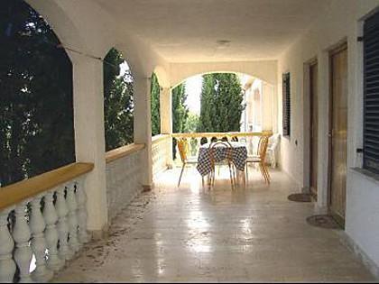 A2-prvi kat(6): common terrace - 5522 A2-prvi kat(6) - Vir - Vir - rentals