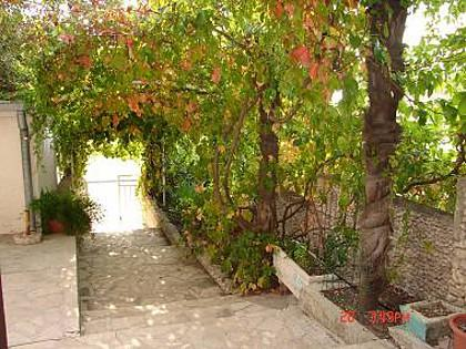 courtyard (house and surroundings) - 01313GRAD SA2(2) - Gradac - Gradac - rentals