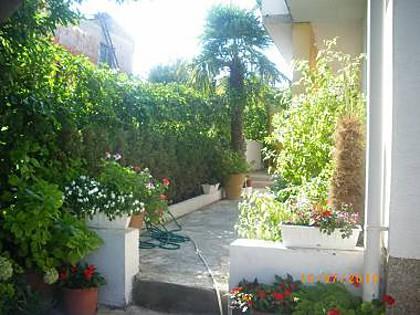 courtyard (house and surroundings) - 00505PAKO A1_donji (5) - Pakostane - Pakostane - rentals