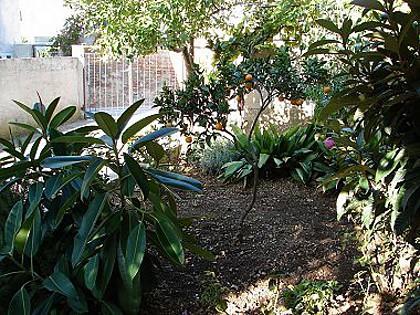 garden (house and surroundings) - 01304KOMI  R3(2) - Komiza - Komiza - rentals