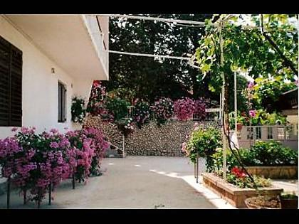 common terrace (house and surroundings) - 2036 A1 (4+2) - Tisno - Tisno - rentals