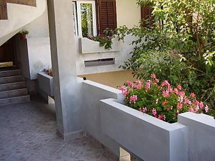 courtyard (house and surroundings) - 2513 A1(2+1) - Nin - Nin - rentals