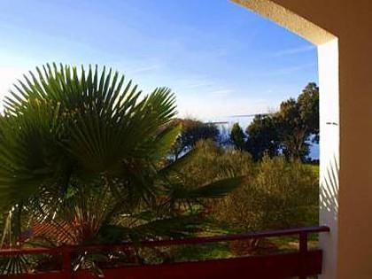 A2(5+1): terrace view - 2641 A2(5+1) - Zaton (Zadar) - Zaton (Zadar) - rentals