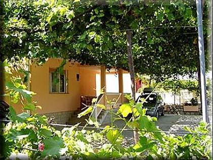 courtyard (house and surroundings) - 2914  A1(4+1) - Supetarska Draga - Supetarska Draga - rentals