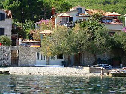 house - 2930  A2(4) - Arbanija - Arbanija - rentals