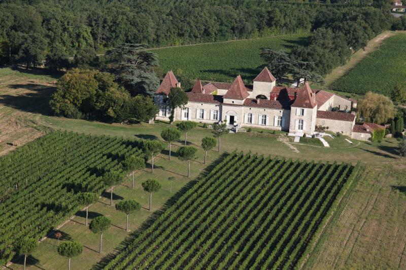 Chateau Tournesol - Image 1 - Espiens - rentals