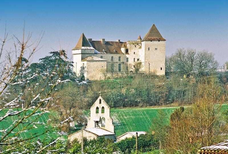 Chateau Garonne - Image 1 - Goudourville - rentals