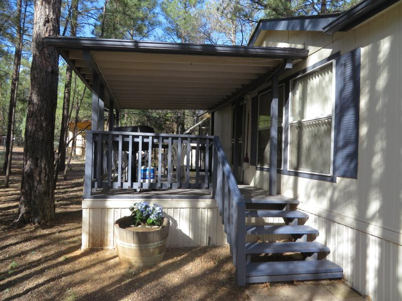 Cool Escape in the Pines - Image 1 - Show Low - rentals