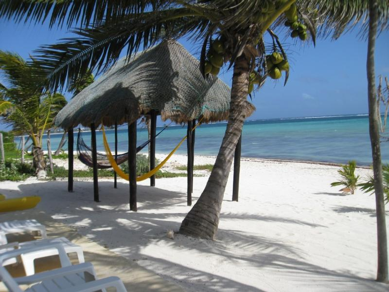 Casa 7mo Cielo, most amazing beachfront property - Image 1 - Tulum - rentals
