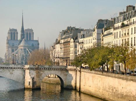 NotreDame- Historic Island Apt * FREE SEINE CRUISE - Image 1 - Paris - rentals