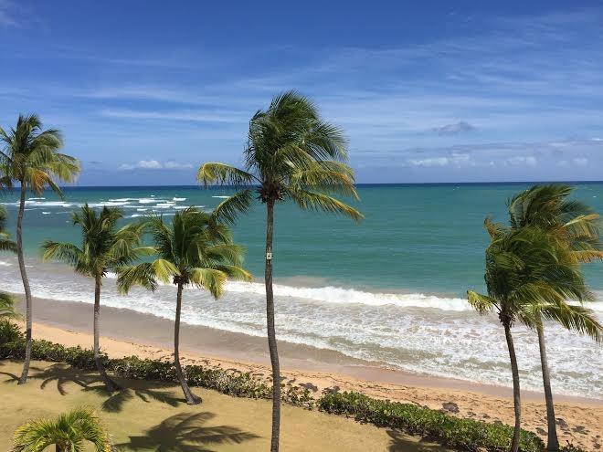 Crescent Beach 264 - Image 1 - Humacao - rentals