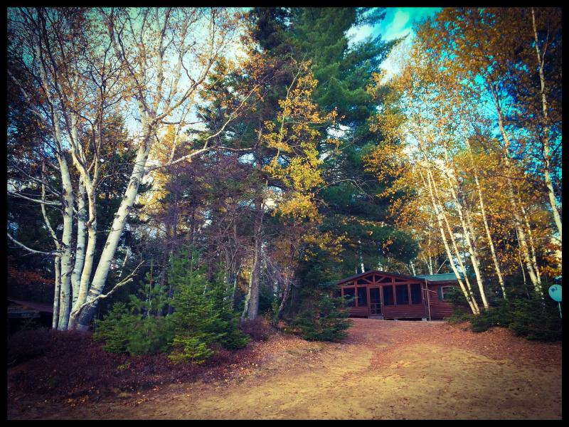 Fall is Here! Check out the fall foliage. - Adirondack Lake front Cabin with beach - Indian Lake - rentals
