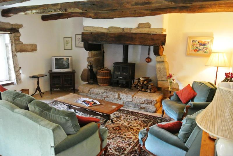 Lounge and fireplace - Mimosa Cottage a Beautiful 3-Bedroom 15C Cottage - Langonnet - rentals
