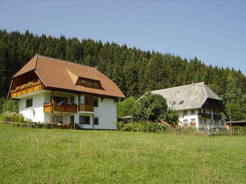 Vacation Apartment in Schramberg -  (# 8384) #8384 - Vacation Apartment in Schramberg -  (# 8384) - Schramberg - rentals