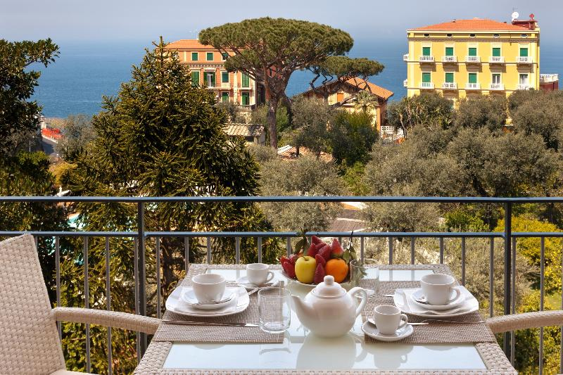The view - Amazing Seafront Apartment, no car needed,wifi, AC - Sorrento - rentals