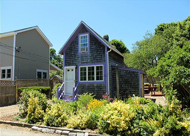 COZY,CUTE COTTAGE NEAR TOWN & BEACH. - Image 1 - Oak Bluffs - rentals