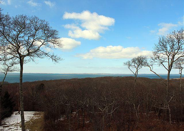 Winter Photo - Think Lush Green Trees - Spectacular Home with Waterviews of Vineyard Sound and Elizabeth Islands - Chilmark - rentals