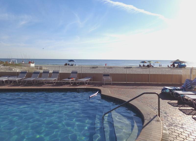 Swimming pool facing the gulf - Beach Front Complex On the Gulf of Mexico. Between Clearwater & St-Pete Beach! - Indian Shores - rentals