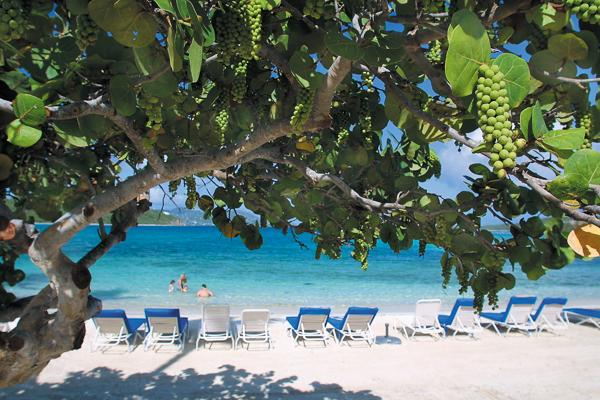 Ritz- Carlton service beckons you on this pristine beachfront villa. MA RR2 - Image 1 - Tutu - rentals