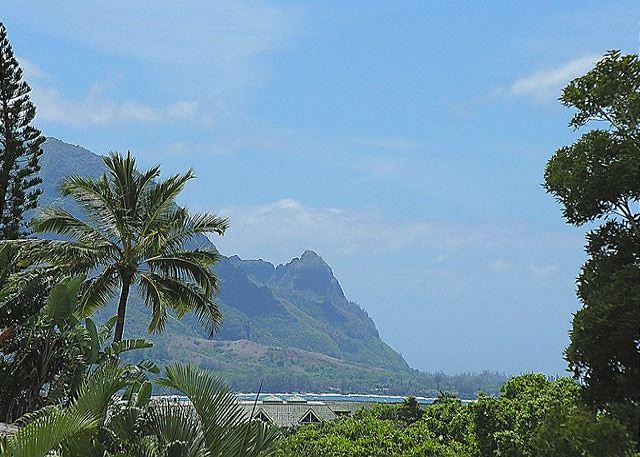 Near to St. Regis and Beach! Bikes and Water gear Included! - Image 1 - Princeville - rentals