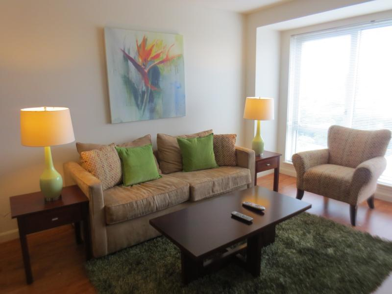 Living room - Lux 1BR by Fenway w/WiFi - Boston - rentals