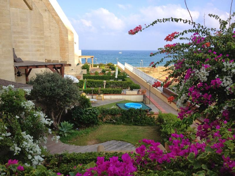 Pegula sea view 1 - Sea & Sun Complex Tel Aviv 100 meters walking distance from the sea - Tel Aviv - rentals