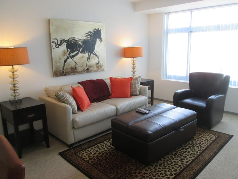Living room - Lux 2BR Cambridge Apt by MIT - Cambridge - rentals
