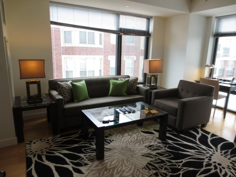 Living room - Lux 1 BR in the Heart of Fenway - Boston - rentals