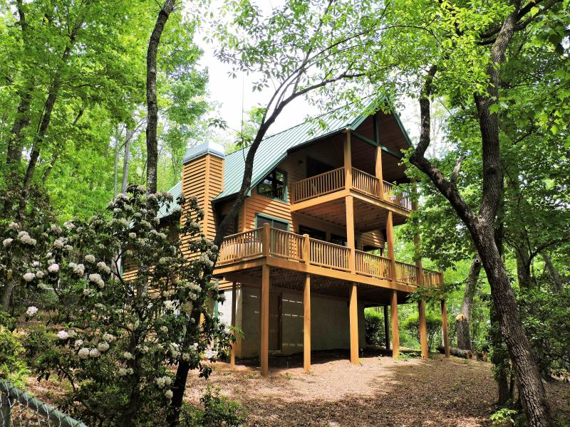 Rear view of cabin with it's multi-leveled covered porches and open decking. - DogWoods Retreat/Tree Frog - Brevard - rentals