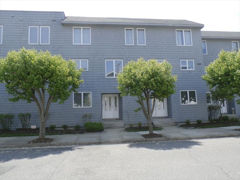 221 Corinthian 125002 - Image 1 - Ocean City - rentals