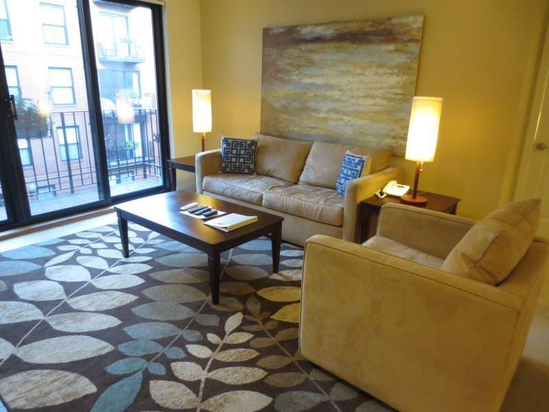 Living Room - Lux 2BR in Post-War building - Boston - rentals