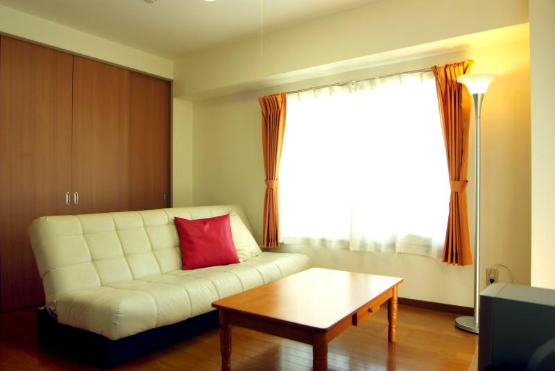 Living Room with Air Conditioning and TV - Spacious Nishi-Ogikubo 2BR Type-A 2F - Suginami - rentals