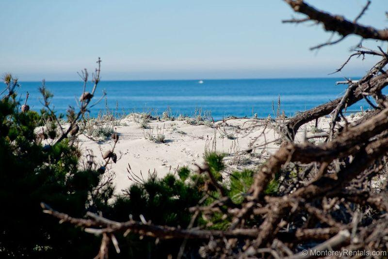 Sunset Drive - Image 1 - Pacific Grove - rentals