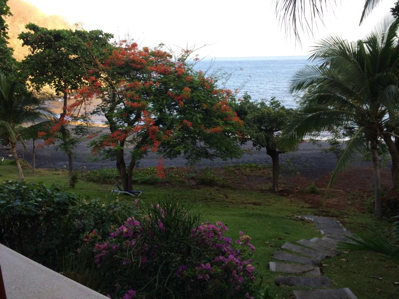 24 steps to the Pacific - Bahia Pez Vela Beachfront Villa-Playa Ocotal (11) - Playa Ocotal - rentals