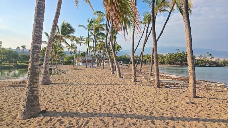 A-Bay Sandy Beach, 5 minutes from our condo - Kolea DIRECT BEACH ACCESS-Newly Remodeled-Resort fees included-Best Value  2/2 - Waikoloa - rentals