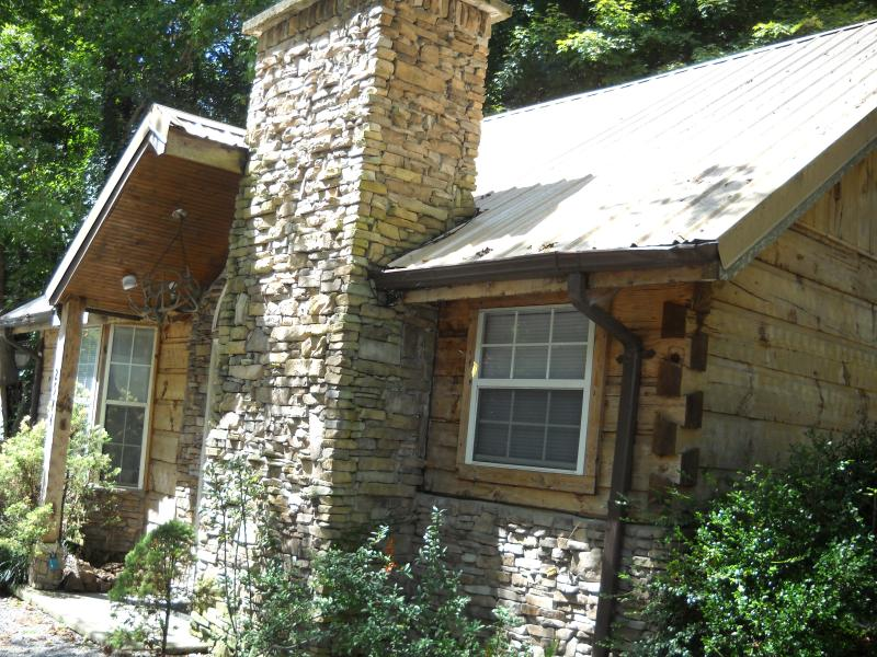 Bear Footn' - Image 1 - Pigeon Forge - rentals