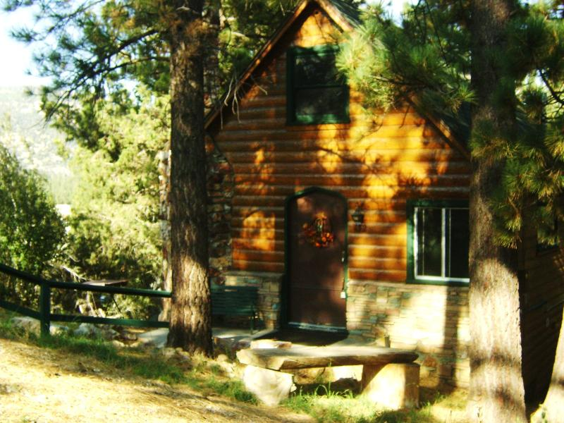 Cabin during the spring & fall. - Enchanting~Romantic Cabin With*HOT TUB*FIREPLACE* - Big Bear Lake - rentals