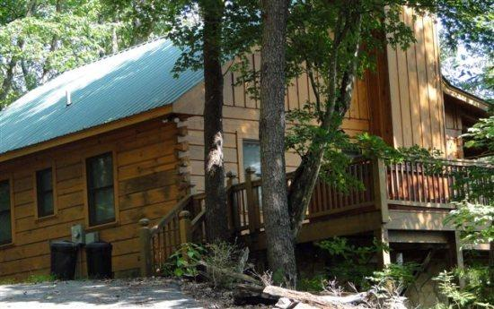 Holly Hollow - charming pet friendly vacation cabin offering great value and fantastic views - Image 1 - Cherry Log - rentals