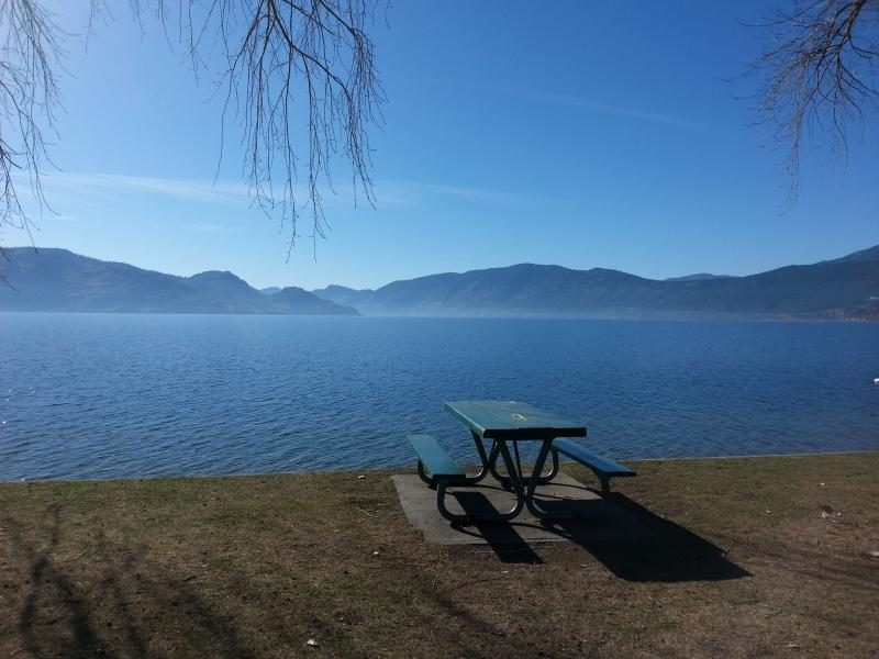 peachland park 1 km from the cottage - Newly Renovated Private Lake view Cottage - Peachland - rentals