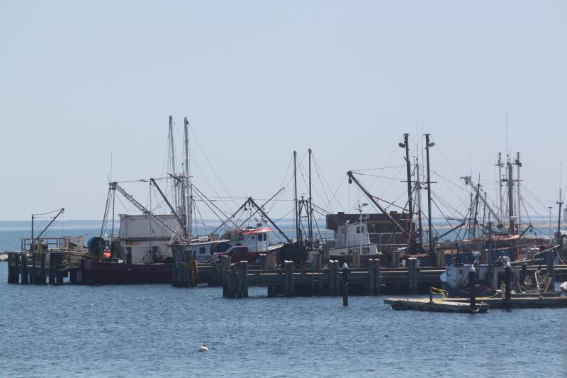 View from the shared deck facing the bay - Waterview 2 bedroom, 2 bath in the center of town. - Provincetown - rentals