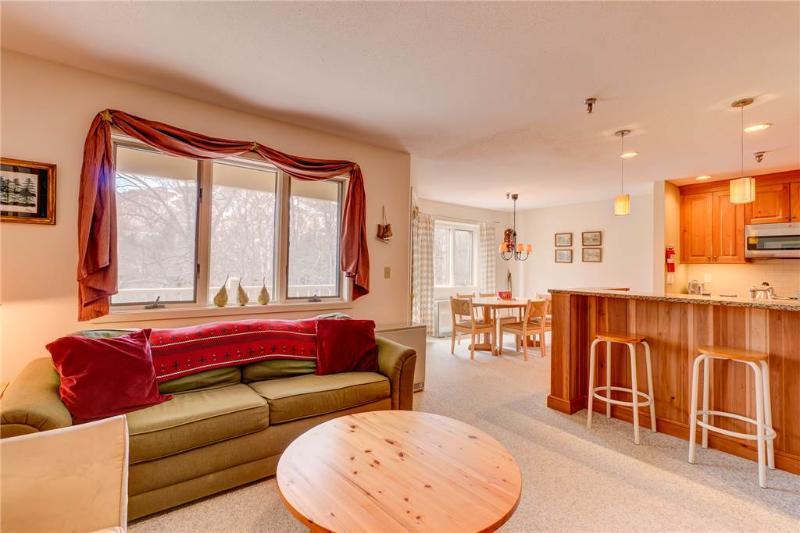 Vantage Point-12 - Image 1 - Stratton Mountain - rentals