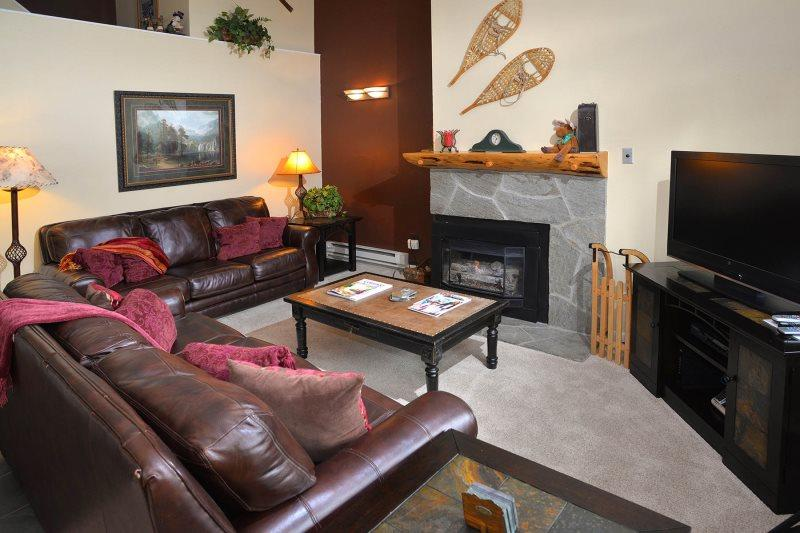Enjoy this 3 bedroom vacation condo only 150 yards to the Gondola Ski Lift in Lionshead Village. - Image 1 - Vail - rentals