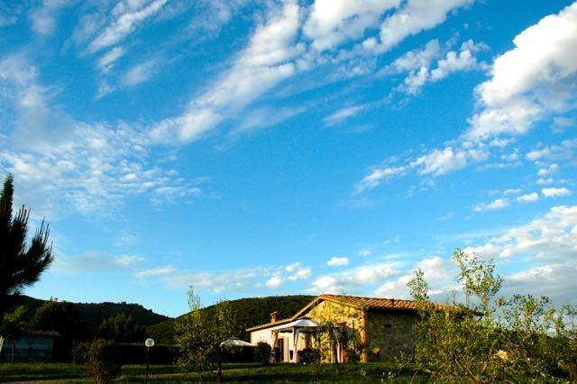 Gorgeous Chianti Vineyards, Private Home, Views! - Image 1 - Siena - rentals