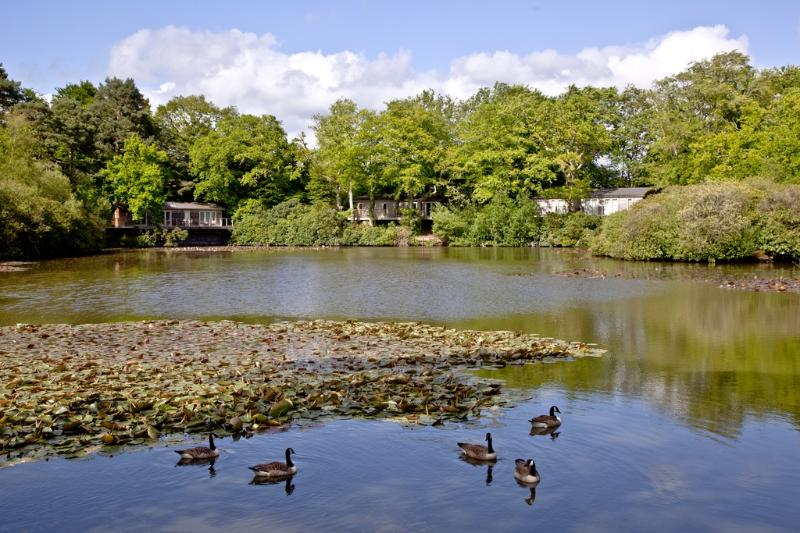 Haytor Lodge, 9 Indio Lake located in Bovey Tracey, Devon - Image 1 - Bovey Tracey - rentals