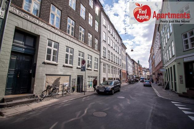 Large Apartment In The Center of Copenhagen - 102 - Image 1 - Copenhagen - rentals